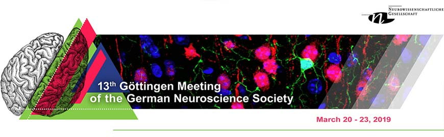 13th Göttingen Meeting of the German Neuroscience Society